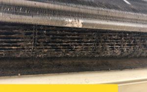 以為洗濾網冷氣就乾淨嗎?中南部有84%冷氣細菌超標!